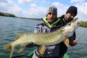 Northern Pike — Jason Kesler