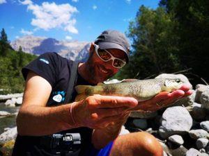 Brown Trout — Mich  Pêche