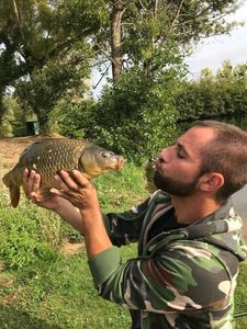 Common Carp — Quentin Damaye