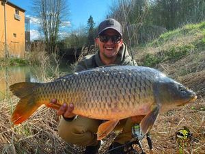 Common Carp — Anthony Ls