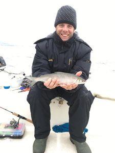 European Whitefish — Lucas Zampi