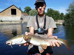 Barbel — Kr Fishing