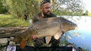 Common Carp — Didier Devillet