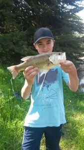 Largemouth Bass — Loann Fishing