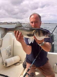 European Bass — Daniel M