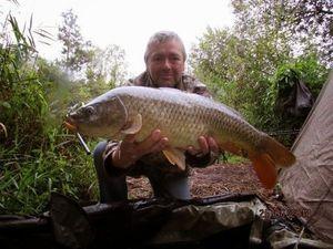 Common Carp — Ian Drewitt
