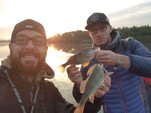 European Perch — Choco Fishing
