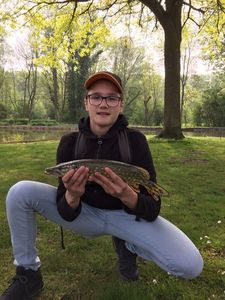 Northern Pike — Louis D
