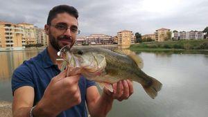Largemouth Bass — Thomas Heuzey