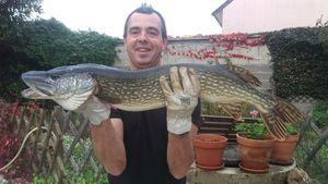 Northern Pike — Serge Coudert