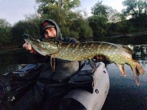 Northern Pike — Baptiste Joao