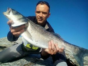 European Bass — anthony MORIN
