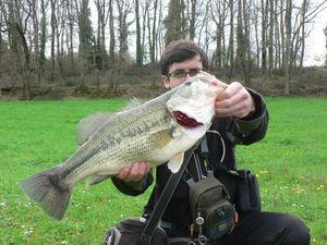 Largemouth Bass — Fabien Carna81
