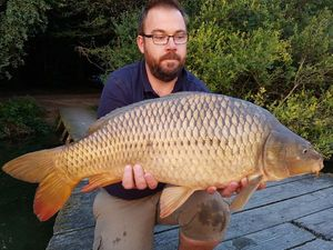 Common Carp — Benjamin  Pineau