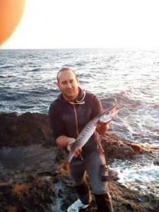Barracuda — David Garcia