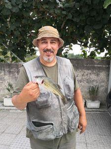 Largemouth Bass — fernando  de almeida