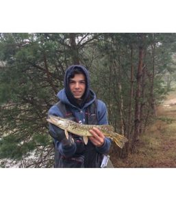 Northern Pike — Theodore&Romain jouvin&thirion