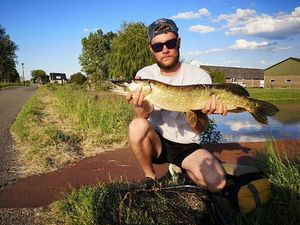 Northern Pike — Scott Bouin