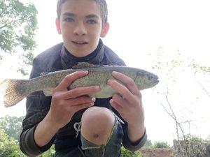 Common Trout — Louison Laborde