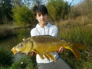 Mirror Carp — Clement & Enzo