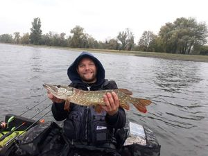 Northern Pike — Jany Thomas Pechocarna88