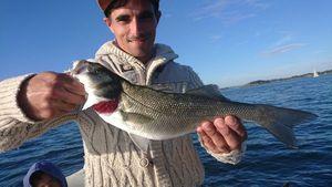 European Bass — Martial Montembault