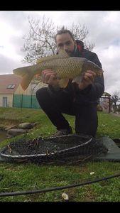 Common Carp — Jordan Thibeaux (@renofishingco)
