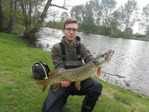 Northern Pike — Alex DARCHIS