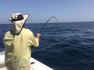 Bluefin Tuna — Nzé Jeremy Guide de pêche