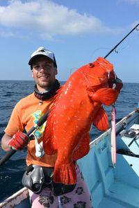 Areolate Grouper — Nicolas Xmylife Rodmaps