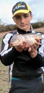 Common Carp — Mathis Blat Donnadieu