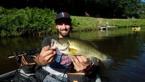 Largemouth Bass — Willy Woonka
