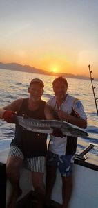 Great Barracuda — Willy Lafon