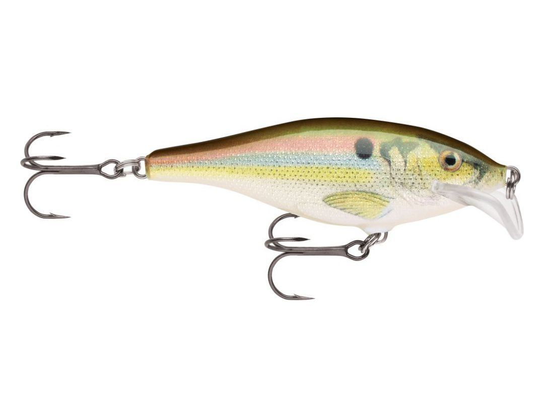 Lures Rapala SCATTER RAP SHAD SCRS05 LIVE RIVER SHAD