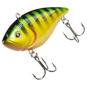 KOWAI 70 STRIPED PERCH
