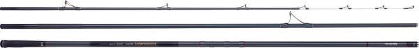 Rods Daiwa TOURNAMENT SURF Z SURF EMMANCHEMENT SCION HYBRIDE
