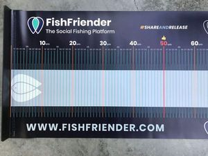Accessories FishFriender TOISE BLEUE XXL