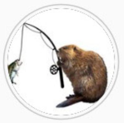 Wild Beaver YT