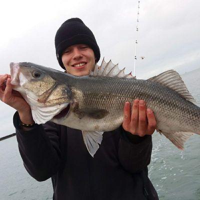 fishiscoming