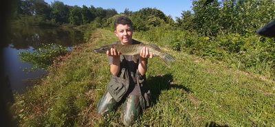Nico Fish