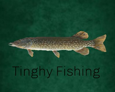 Tinghy fishing