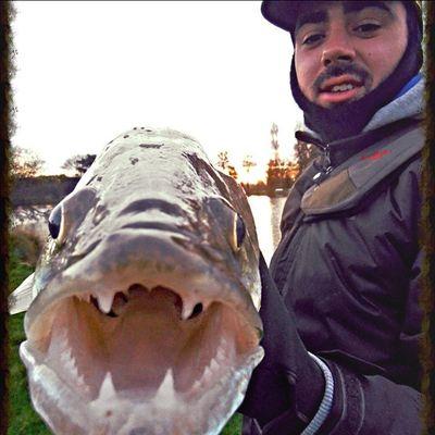 Ju Fishing