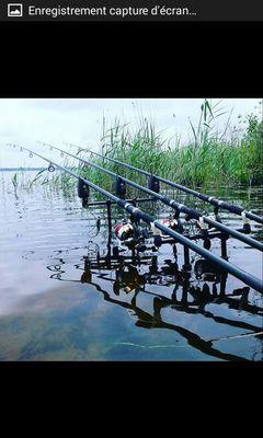 P'tit Dard Carp Fishing