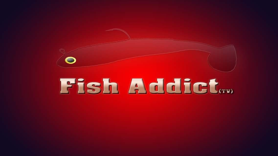 Fish addict