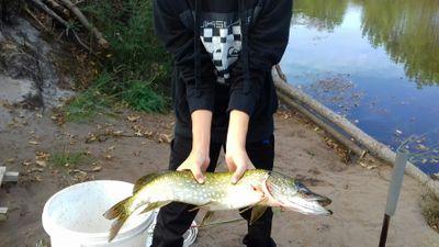 TNME_ FISHING