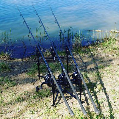 Tony Carp Angler