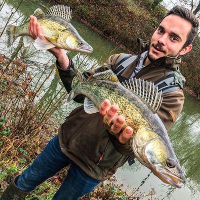 pêche carnassier 12