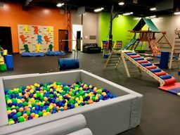 Little Land Play Gym franchise