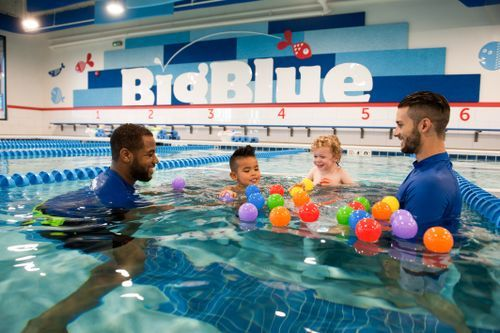 Big Blue Swim School Franchise For Sale