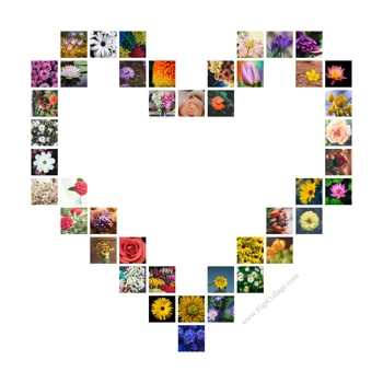 Heart photo grid collage with pictures placed at the shape edges only